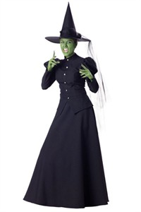Adult Wicked Witch Costume