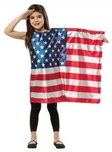 Child American Flag Dress