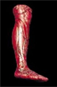 Skinned Right Leg Prop