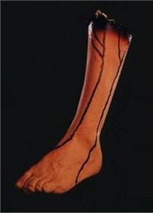 Vinyl Left Leg Prop