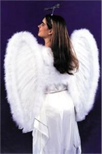 Adult Angel Costume Dress