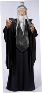 Adult Sensei Master Costume