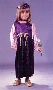 Toddler Velvet Harvest Princess Costume