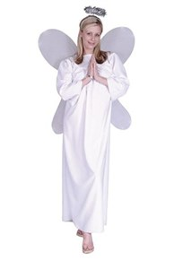 Adult Classic Angel Costume