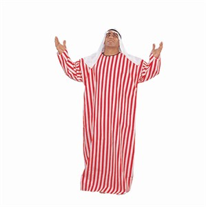 Adult Plus Size Arabian Costume