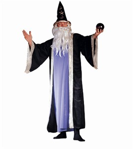Adult Plus Size Deluxe Wizard Costume