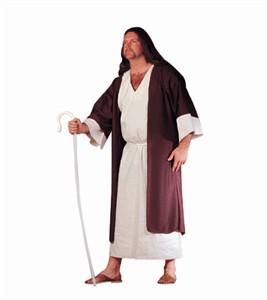 Adult Plus Size Shepherd Costume