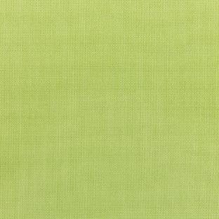 S-5405 - Canvas Parrot