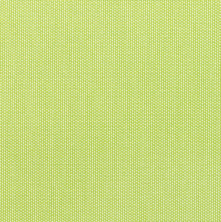 S-5405(+360.00) - Canvas Parrot