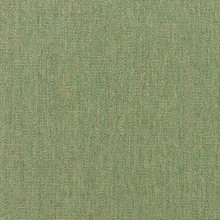 S-5487 - Canvas Fern