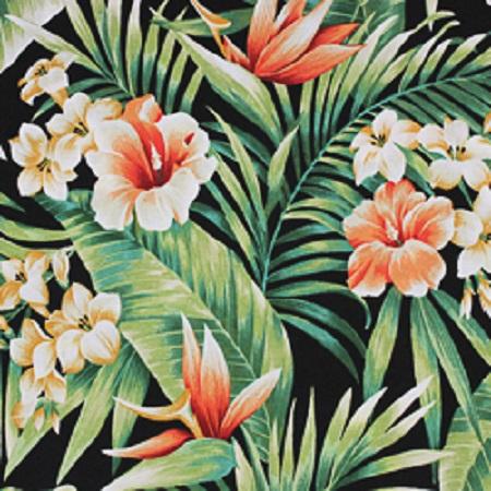 D360 - Cypress Midnight