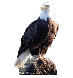 Eagle Cardboard Cutout