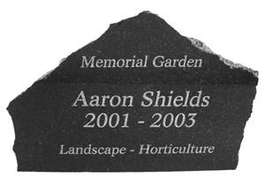 Etched Granite…medium
