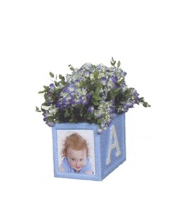 It's a Boy Indoor Photo Planter
