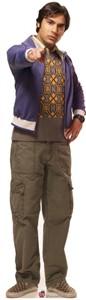 Life Size Big Bang Theory Raj Standee