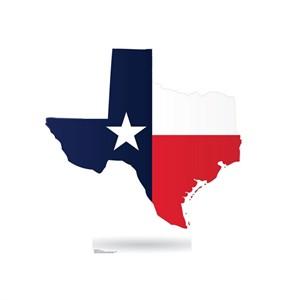 Texas State Standup Cardboard Cutout