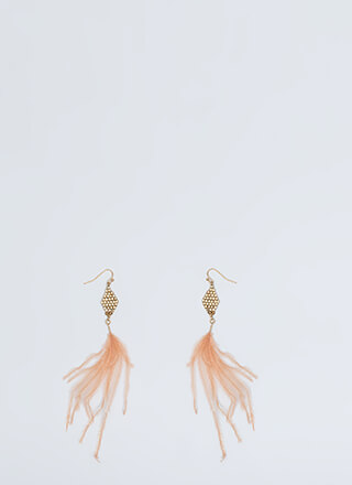 Feather Weather Dangling Earrings