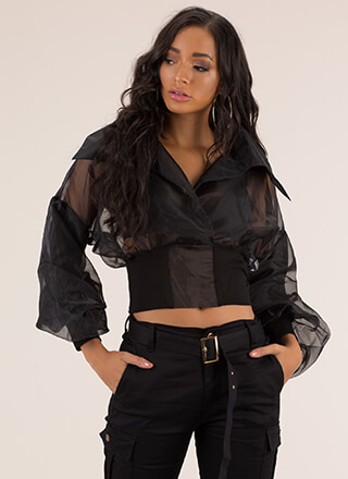I'm A Lady Collared Organza Blouse