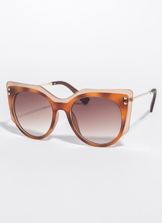 Frame Of Mind Two-Toned Sunglasses