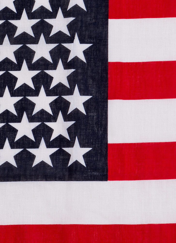 Stars And Stripes American Flag Scarf MULTI