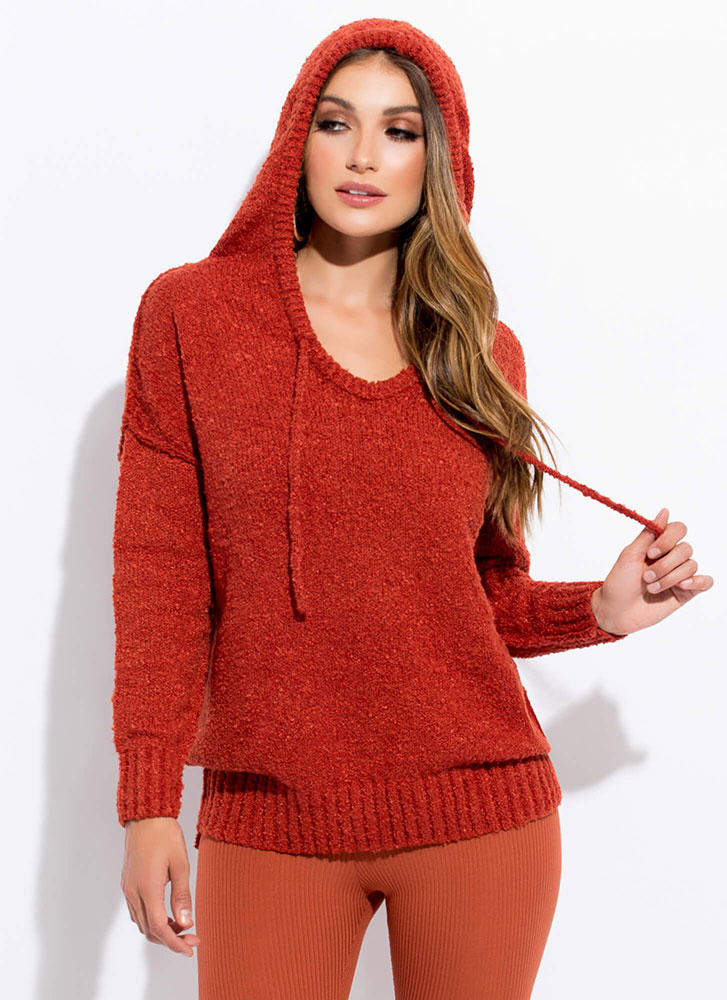 Take A Sweater Soft Knit Hoodie RUST