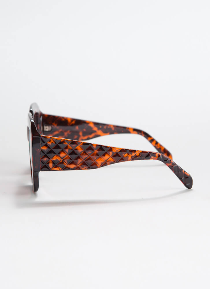 Geometry Class Thick-Rimmed Sunglasses TORT