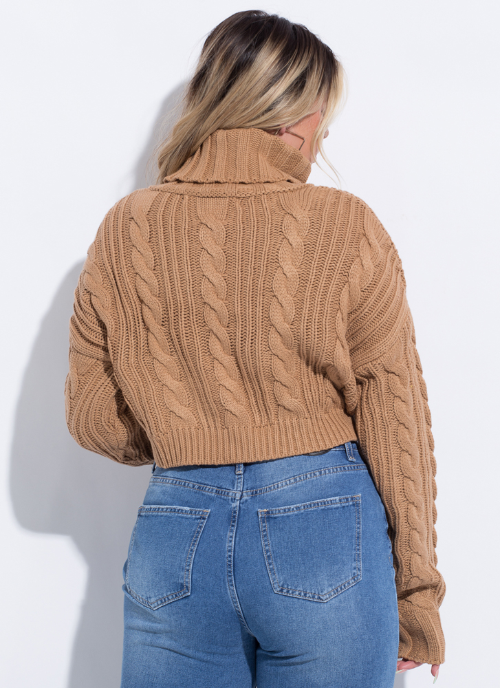 New Crop High-Low Turtleneck Sweater TAUPE