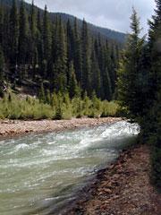 Mineral Creek, Colorado