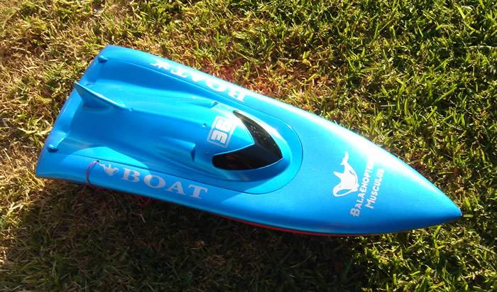 Blue RC Boat