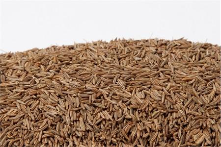 Caraway Seeds (25 Pound Case)