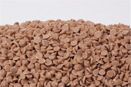 Cinnamon Chips (25 Pound Case)