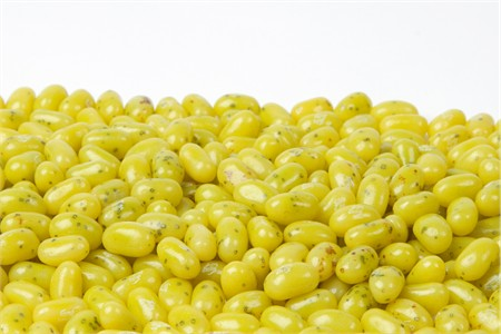 Jelly Belly Juicy Pear jelly beans (1 Pound Bag)