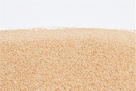 Organic Amaranth (1 Pound Bag)
