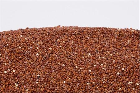 Organic Red Quinoa (25 Pound Case)