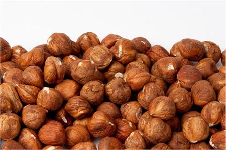 Raw Oregon Hazelnuts - Filberts (1 Pound Bag)