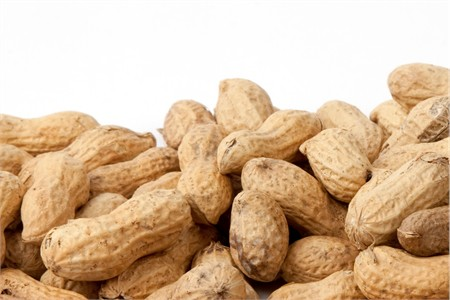 Salted In-Shell Peanuts (10 Pound Case)