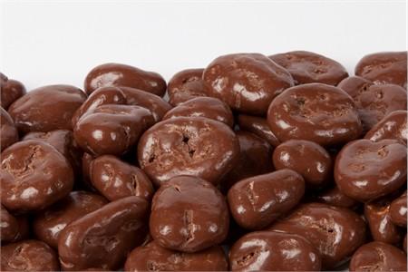 Sugar Free Chocolate Covered Pecans (1 Pound Bag)