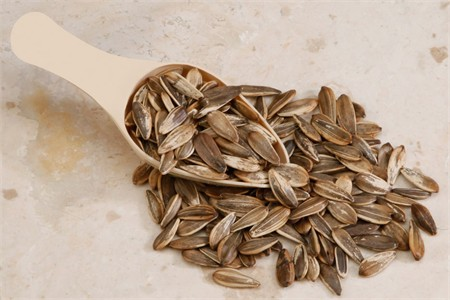 Unsalted In-Shell Sunflower Seeds (4 Pound Bag)