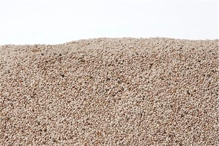 White Chia Seeds (1 Pound Bag)