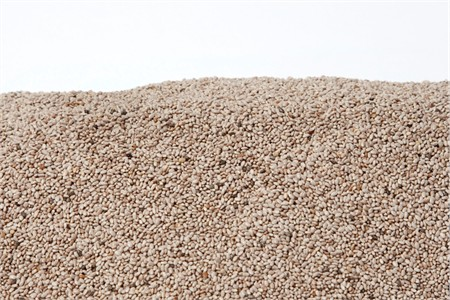 White Chia Seeds (4 Pound Bag)