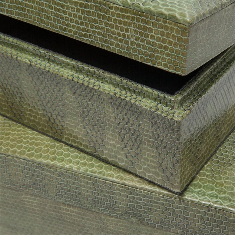 Garland Snakeskin Boxes Set | Green
