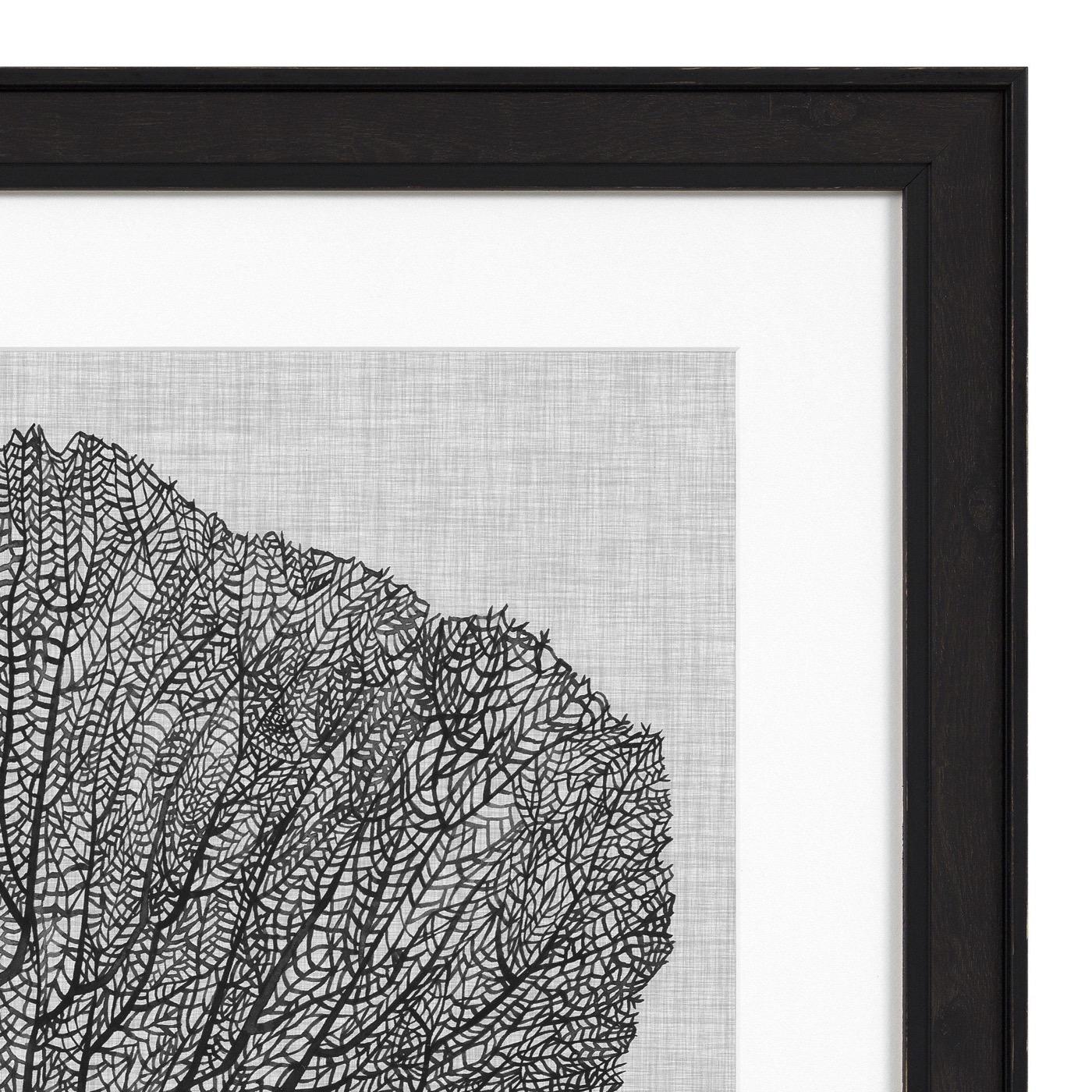 Cabo Sea Fan Prints | Set of 4