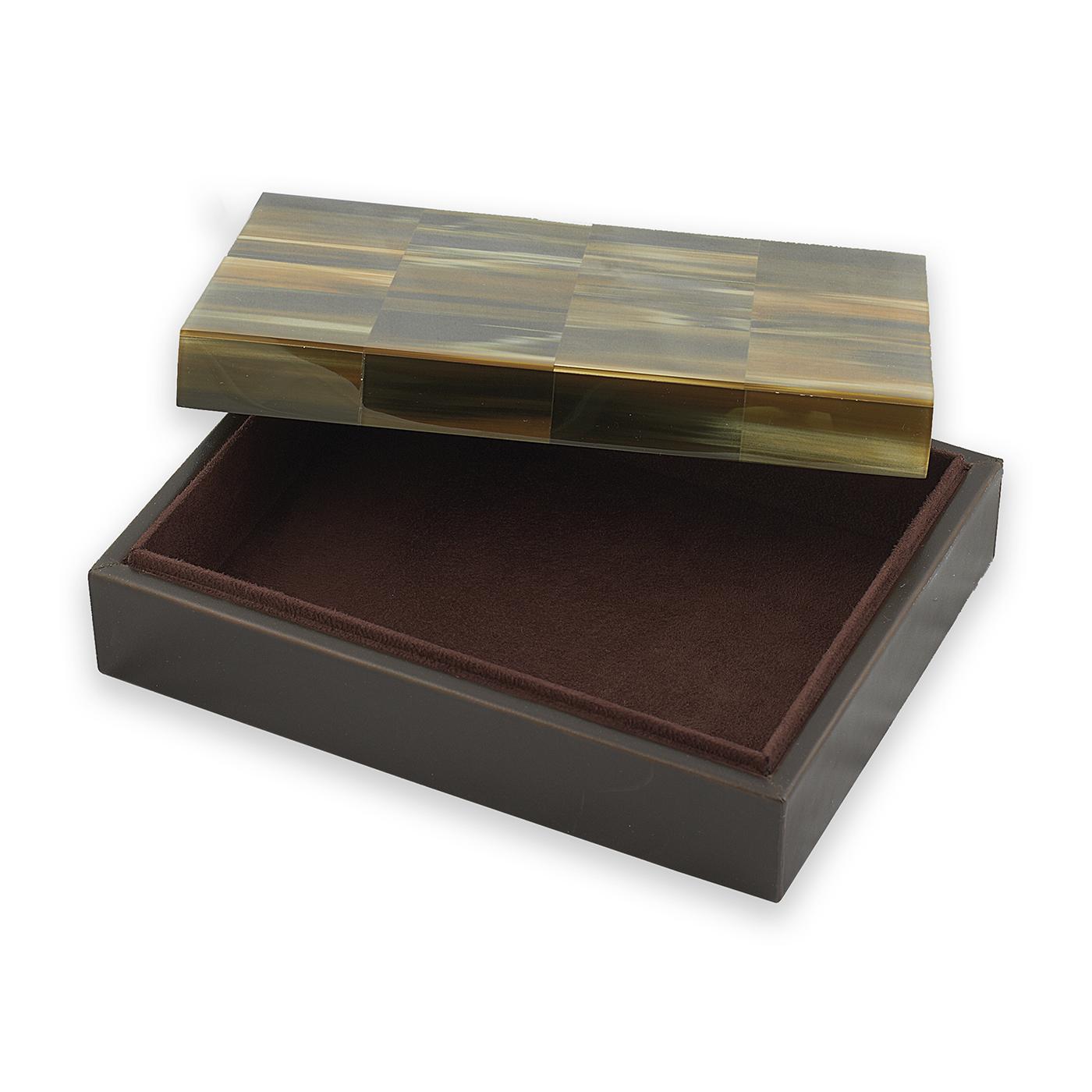 Salinas Horn Box