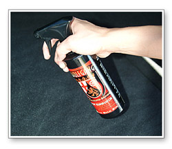 Wolfgang Spot Eliminator can be used on virtually any surface, including the dashboard and door panels.
